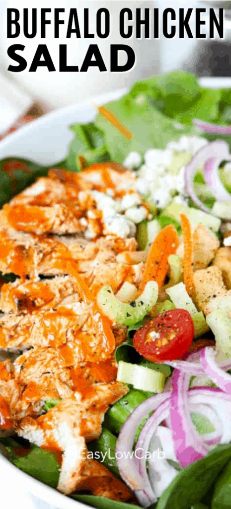 Buffalo Chicken Salad served in a white bowl