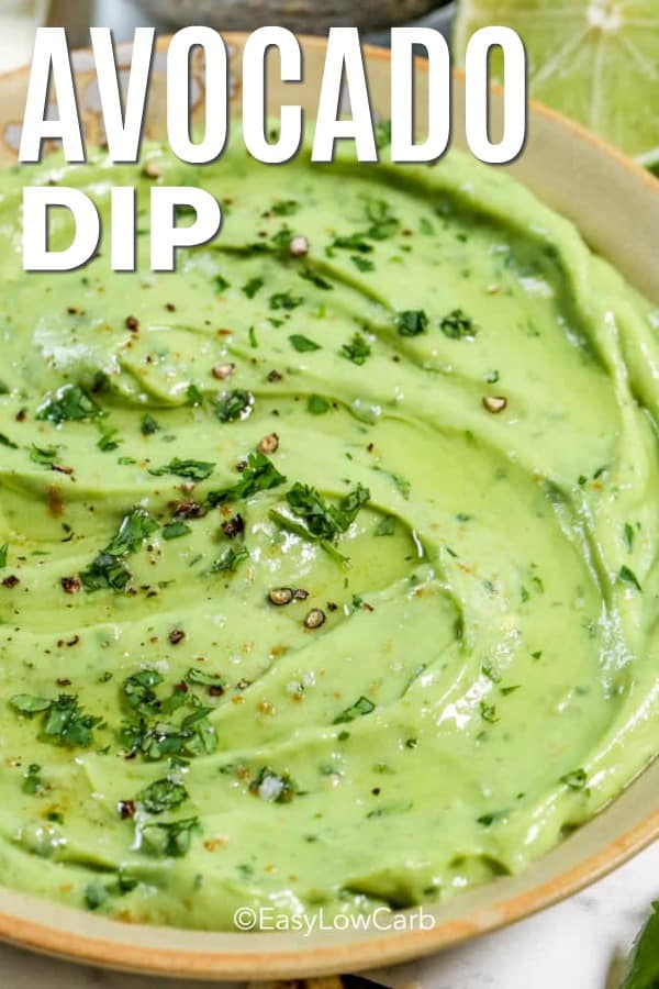 closeup of low carb avocado dip