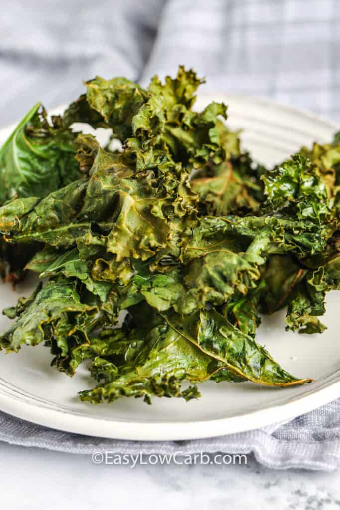 plated Air Fryer Kale Chips